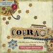 2008_009_courage